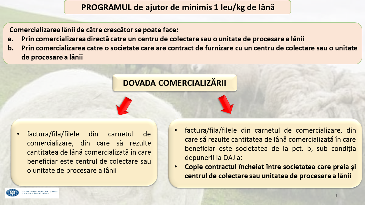 PROGRAM LÂNĂ - Copy